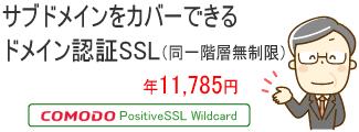サブドメインをカバーできるドメイン認証SSL(同一階層無制限)Comodo PositiveSSL Wildcard 年11,785円
